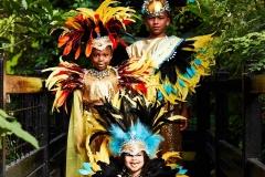 Carnival Costumes Tropical World May 2017 #13
